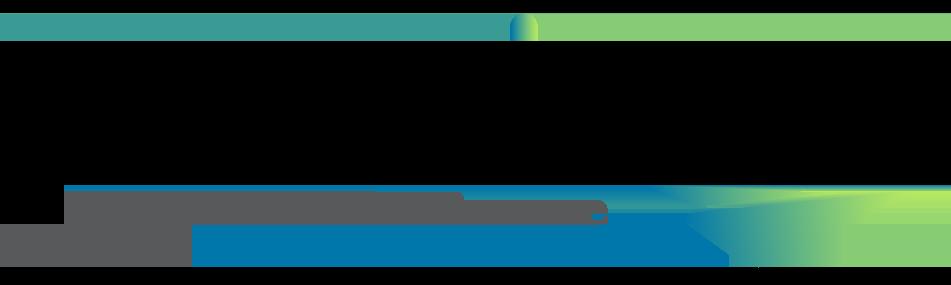 Permizon logo